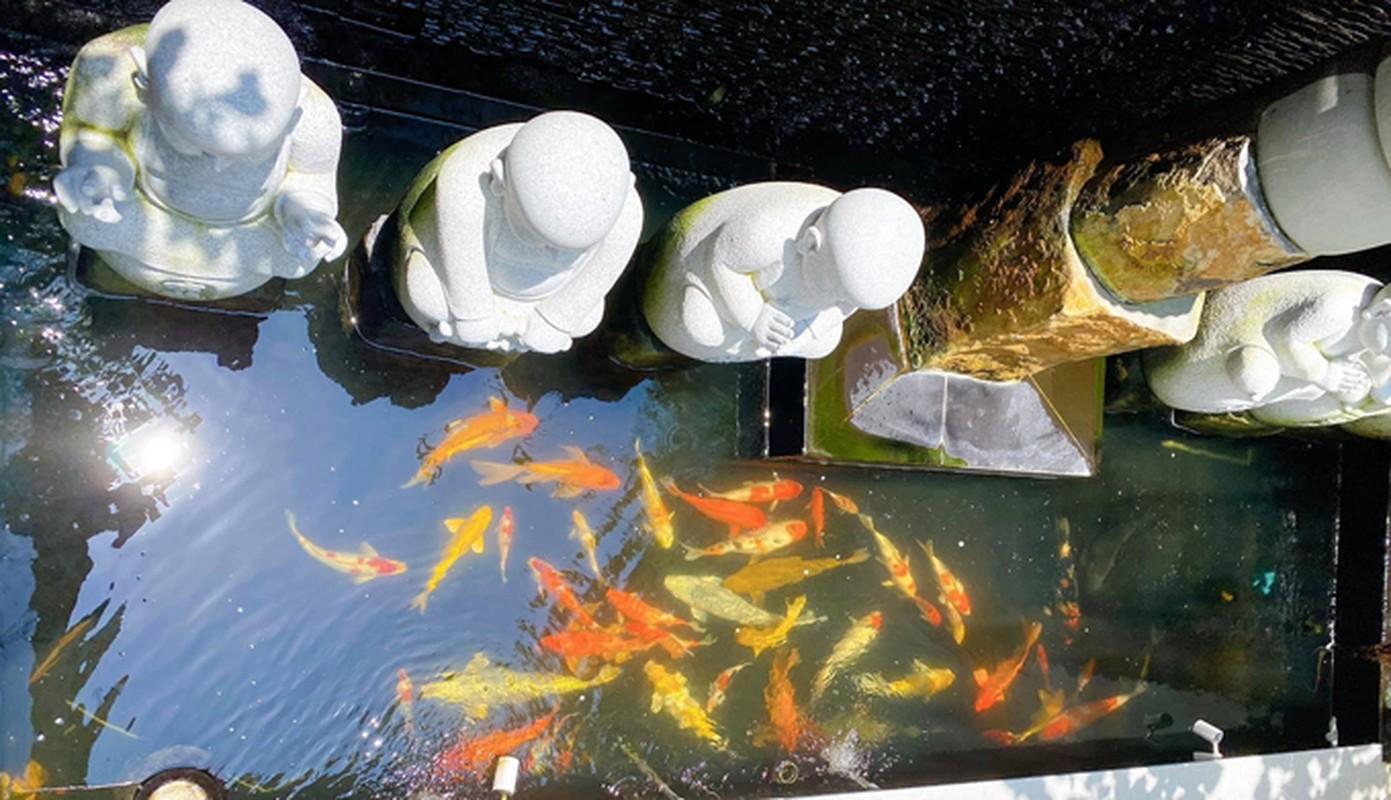 Boc gia loat do dung xa xi trong biet thu cua Shark Khoa-Hinh-10