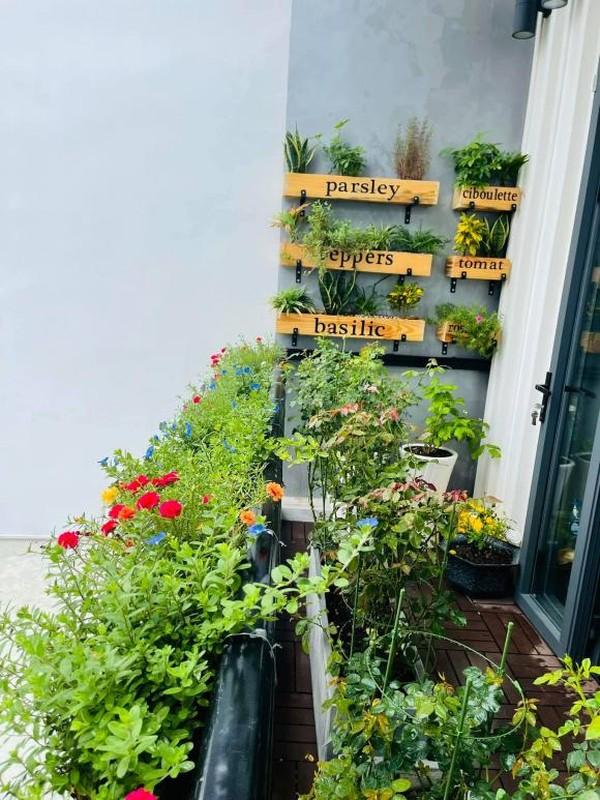 Ban cong xanh muot, ngap hoa trong nha mat pho cua Ho Bich Tram-Hinh-10