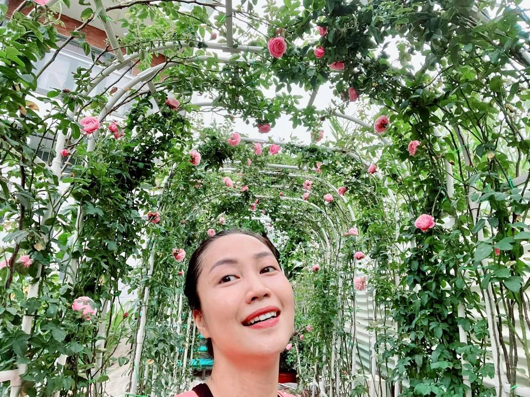 Vuon hong hoanh trang nhu rap dam cuoi cua Oc Thanh Van-Hinh-5
