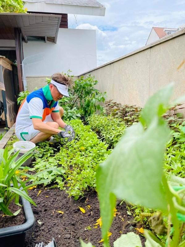 Man nhan vuon rau xanh muot trong biet thu 60 ty cua Dam Vinh Hung-Hinh-3