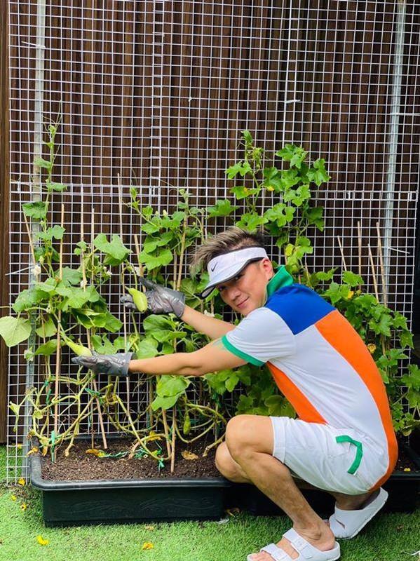 Man nhan vuon rau xanh muot trong biet thu 60 ty cua Dam Vinh Hung-Hinh-7