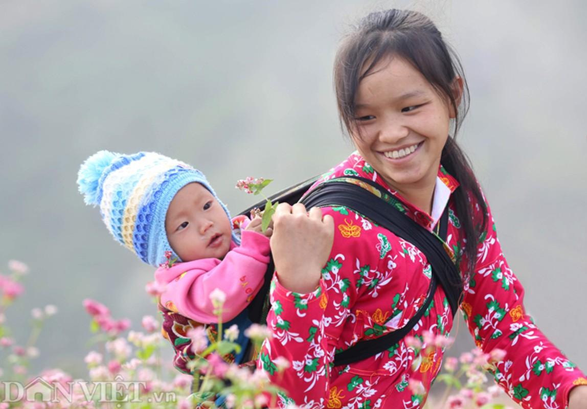 Anh: Me man nhung doi hoa tam giac mach o Ha Giang-Hinh-8