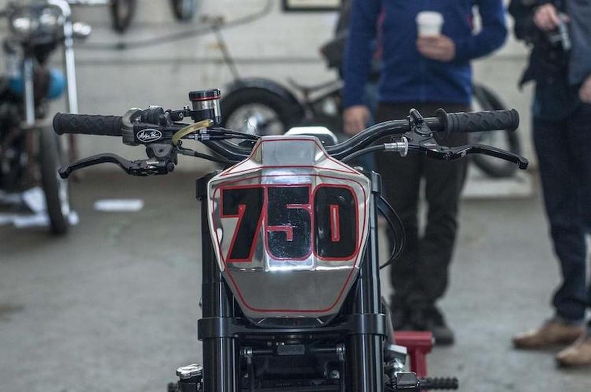 "Ngam Harley-Davidson Street 750 ""lot xac"" tracker sieu doc-Hinh-2"