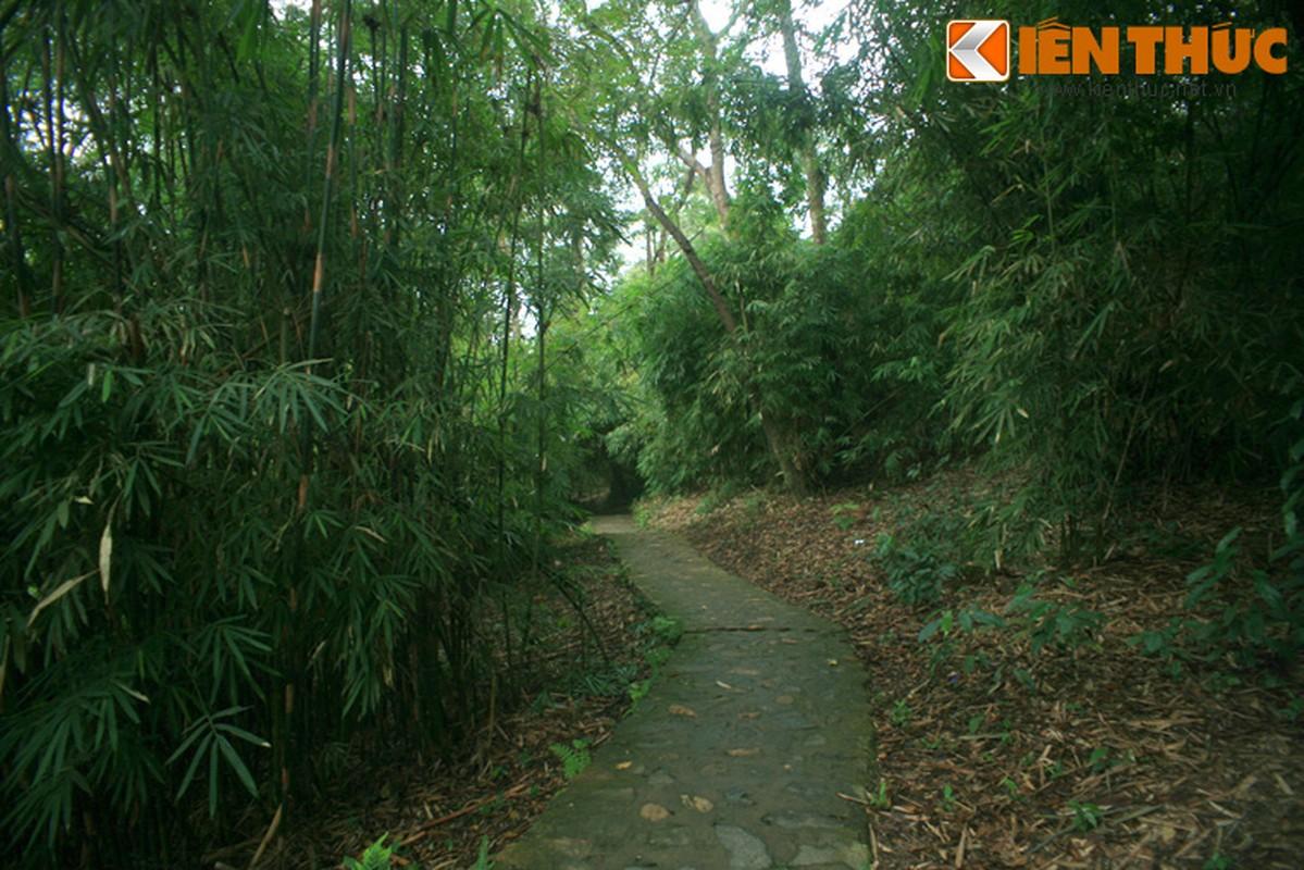 Tham noi o va lam viec cua Bac Ho o chien khu Tan Trao-Hinh-10
