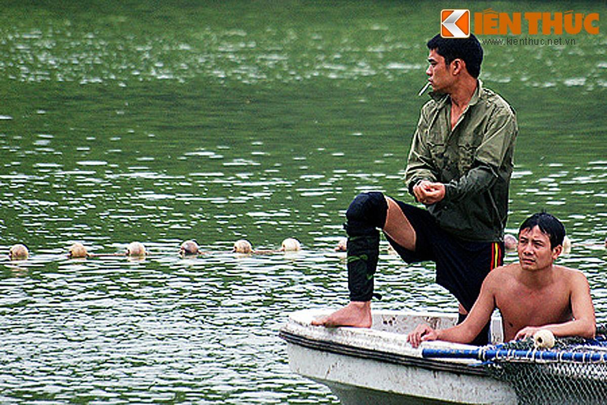 Anh doc: Bo doi dac cong bat cu Rua ho Guom 2011-Hinh-3