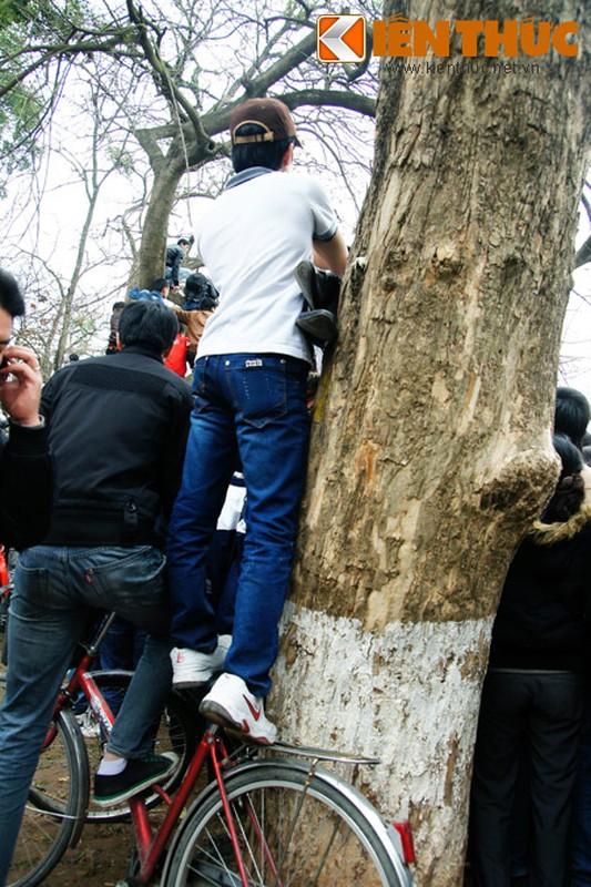 1.001 kieu xem cu Rua Ho Guom noi o Ha Noi-Hinh-10