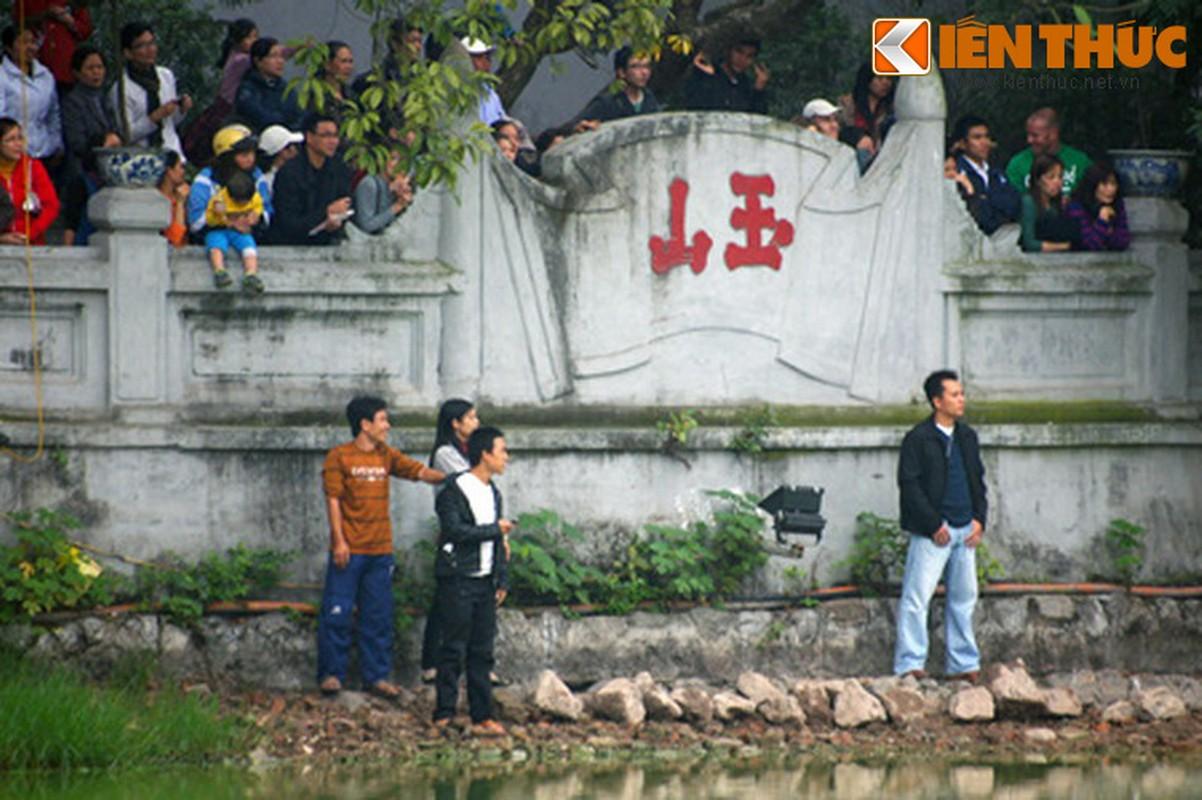 1.001 kieu xem cu Rua Ho Guom noi o Ha Noi-Hinh-14