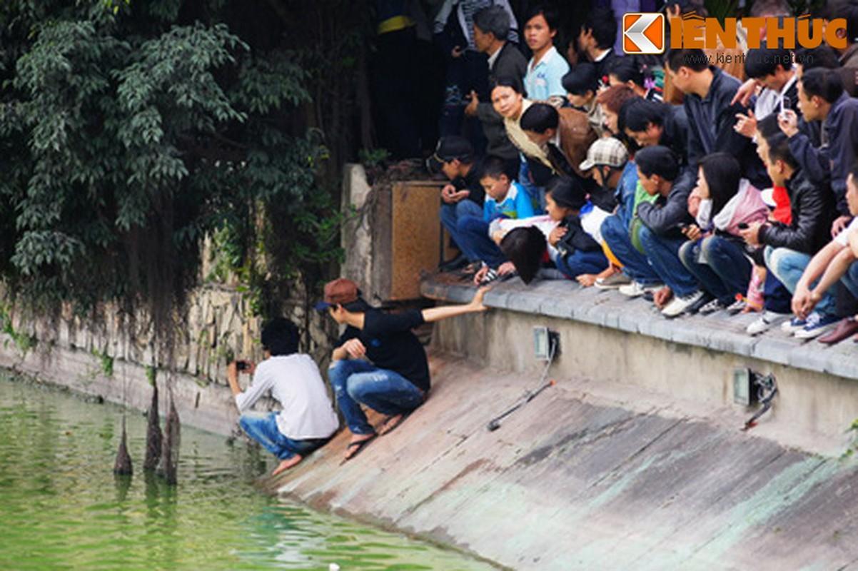 1.001 kieu xem cu Rua Ho Guom noi o Ha Noi-Hinh-20