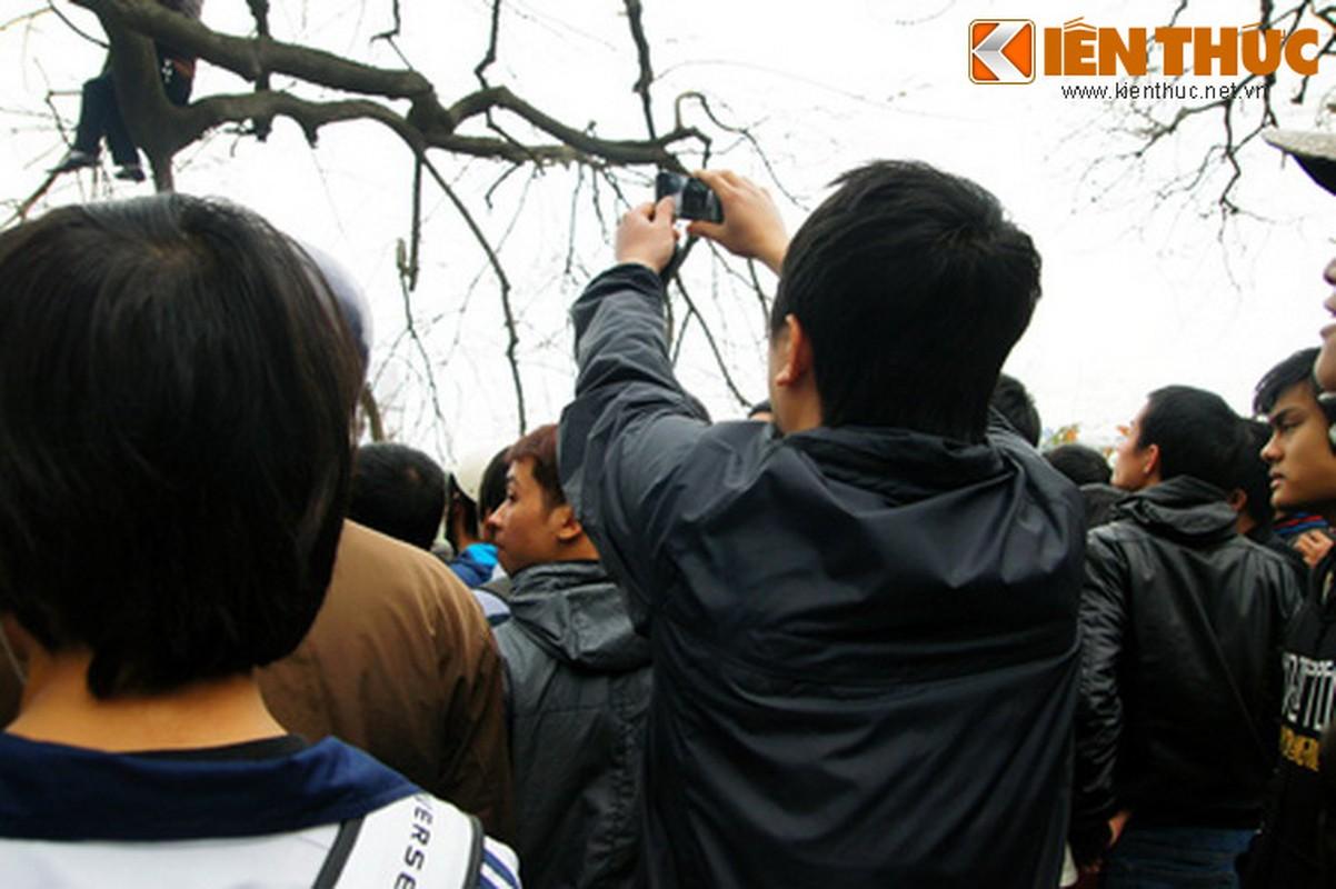 1.001 kieu xem cu Rua Ho Guom noi o Ha Noi-Hinh-22