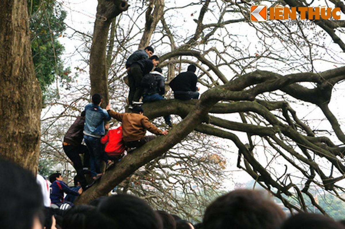 1.001 kieu xem cu Rua Ho Guom noi o Ha Noi-Hinh-4