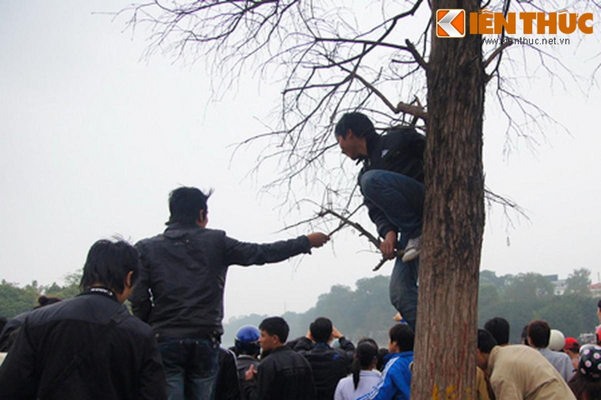 1.001 kieu xem cu Rua Ho Guom noi o Ha Noi-Hinh-6
