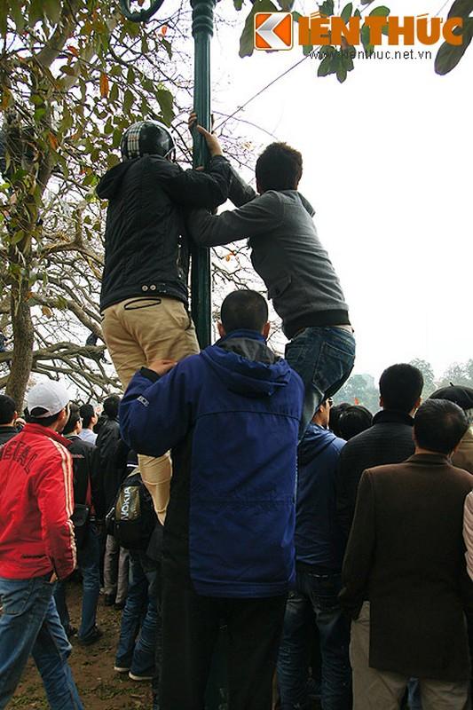 1.001 kieu xem cu Rua Ho Guom noi o Ha Noi-Hinh-7