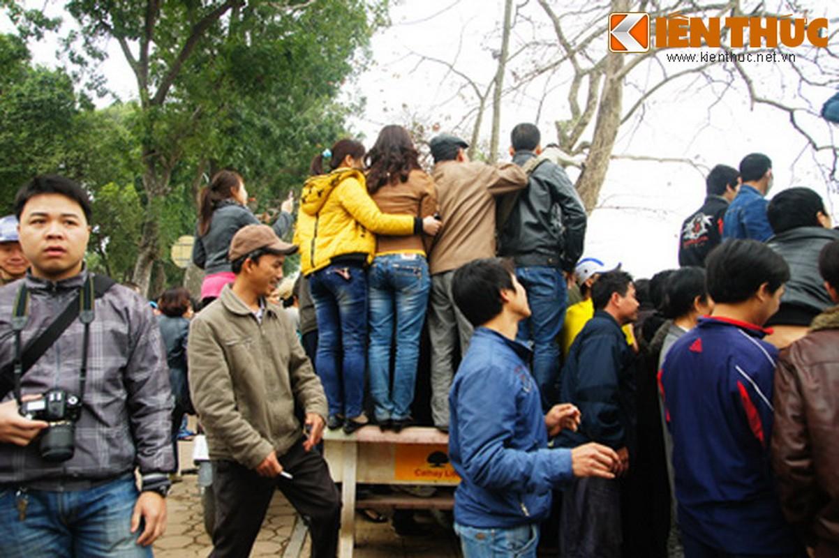 1.001 kieu xem cu Rua Ho Guom noi o Ha Noi-Hinh-8