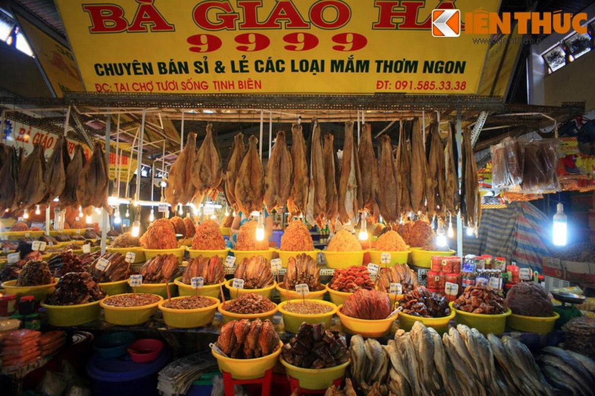 Kham pha xu so mam ca co mot khong hai cua Viet Nam