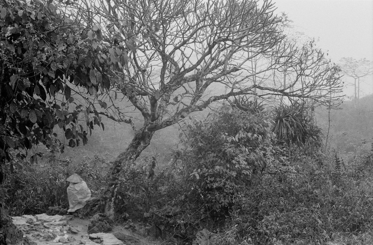 Canh tray hoi chua Huong nam 1990 qua ong kinh Tay-Hinh-9