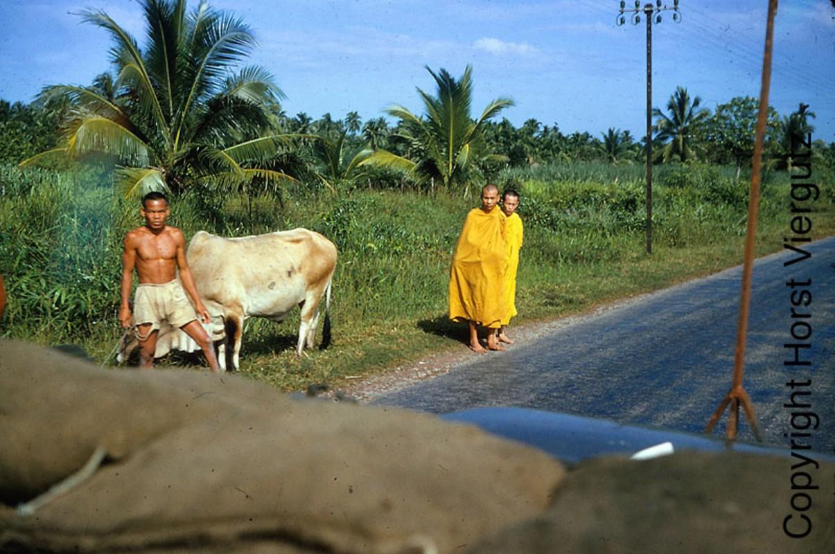 Mien Nam Viet Nam nam 1965 - 1966 trong anh cuu binh My