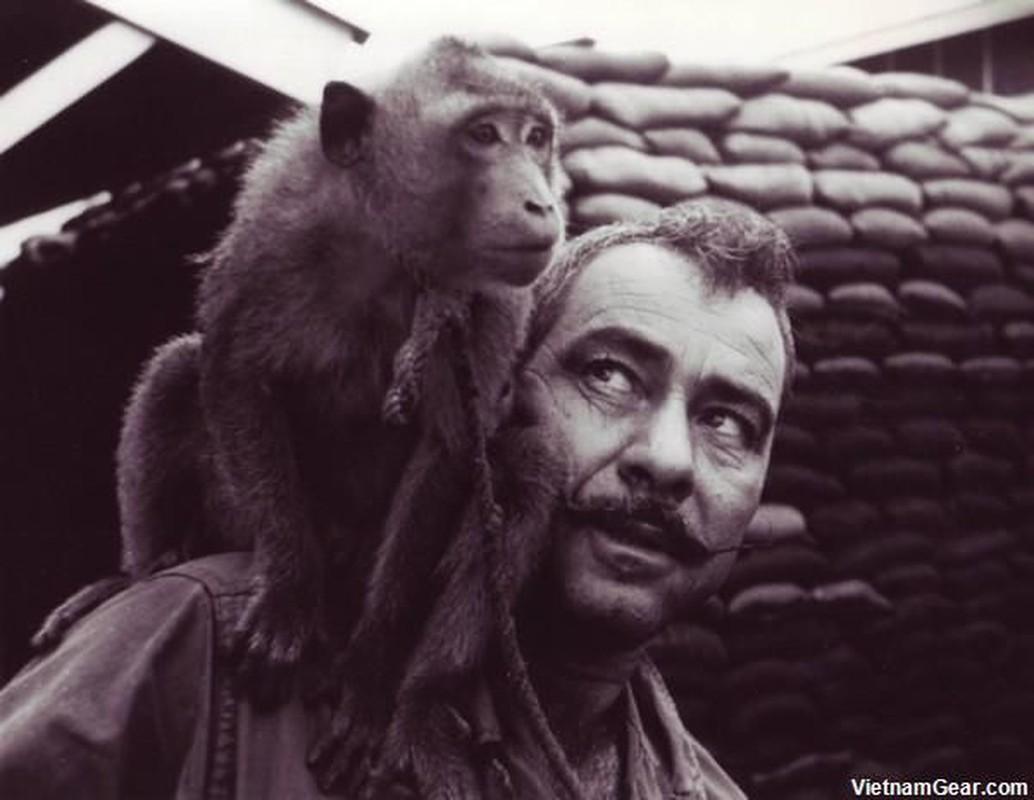 Anh doc: Linh My nuoi khi nhu thu cung thoi chien tranh Viet Nam-Hinh-3