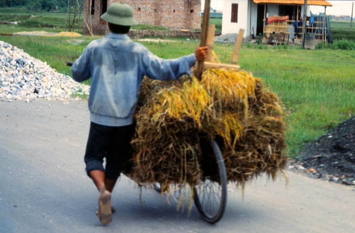 Anh cuc doc ve xe dap o Ha Noi nam 1990-Hinh-8