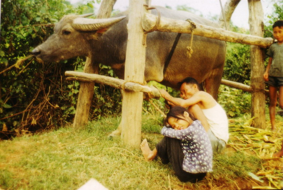 Nong thon Thai Nguyen nam 1973 - 1974 qua ong kinh pho nhay Duc-Hinh-11