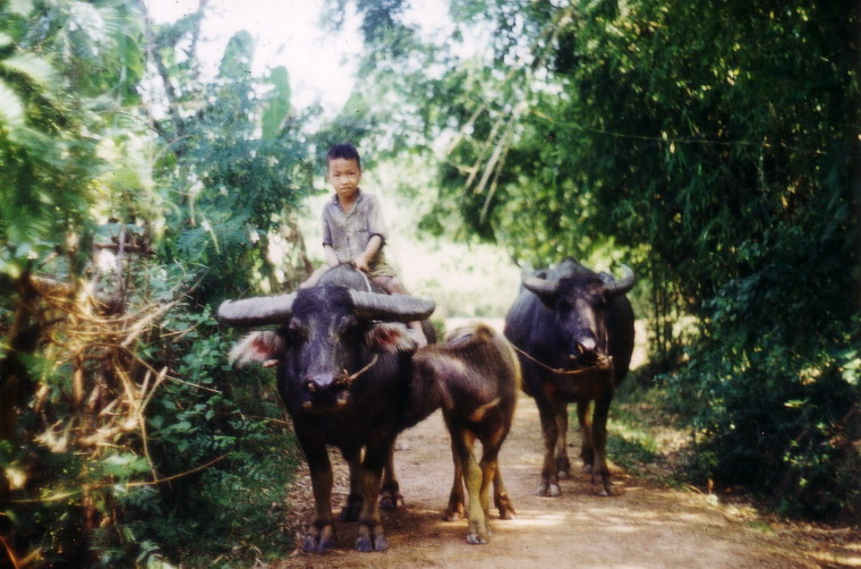 Nong thon Thai Nguyen nam 1973 - 1974 qua ong kinh pho nhay Duc-Hinh-12