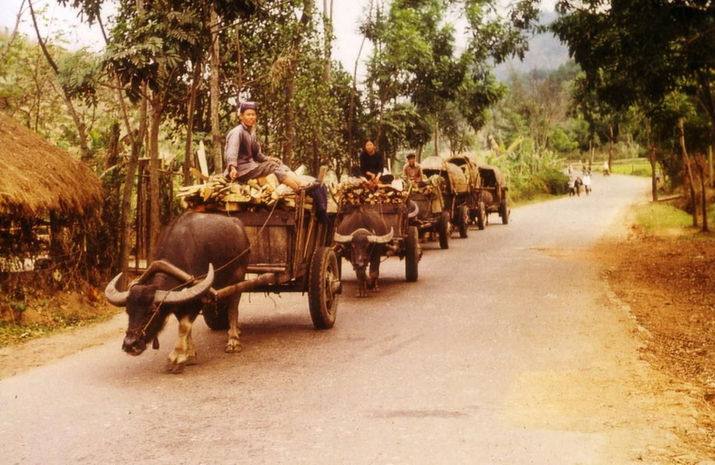 Nong thon Thai Nguyen nam 1973 - 1974 qua ong kinh pho nhay Duc-Hinh-4