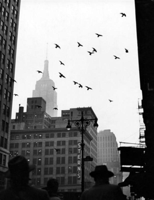 Tan muc cuoc song o New York thap nien 1940 - 1950-Hinh-2