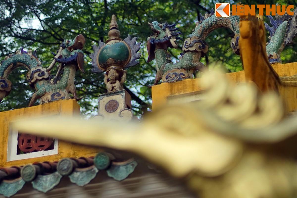Can canh trai chau co phu men mau quy gia tai lang Ong Ba Chieu-Hinh-3