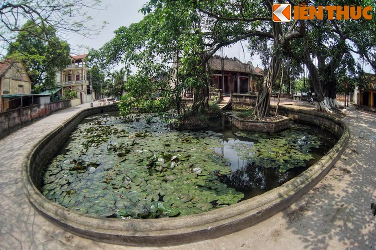 Kham pha bau vat kien truc co lang Nom, di san hiem co Viet Nam-Hinh-3