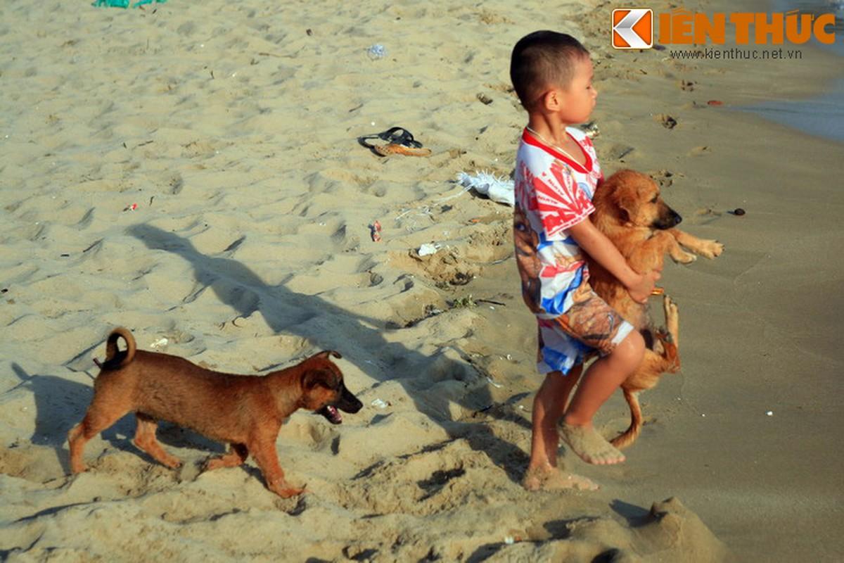 Chuyen kho tin ve nguon goc giong cho Phu Quoc huyen thoai-Hinh-3