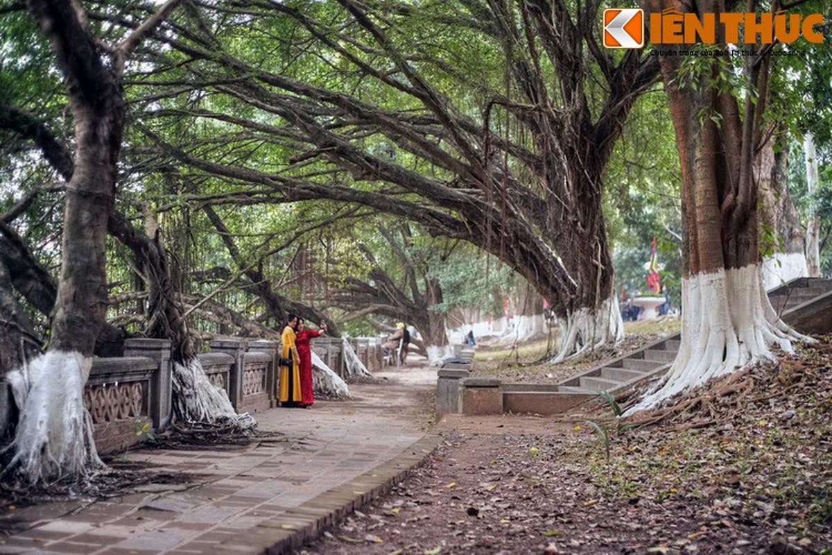 Ve dep huyen ao ngoi den tran giu phia Tay Ha Noi-Hinh-10