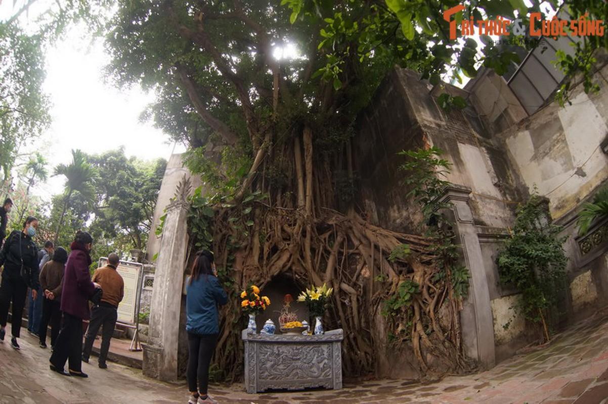 Giai ma tam bia co ky bi cua ngoi den tran Nam Thang Long-Hinh-10