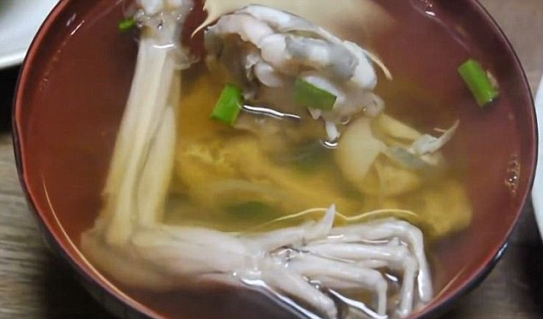 Mon sashimi ech song chi nhin thoi cung noi gai oc-Hinh-5