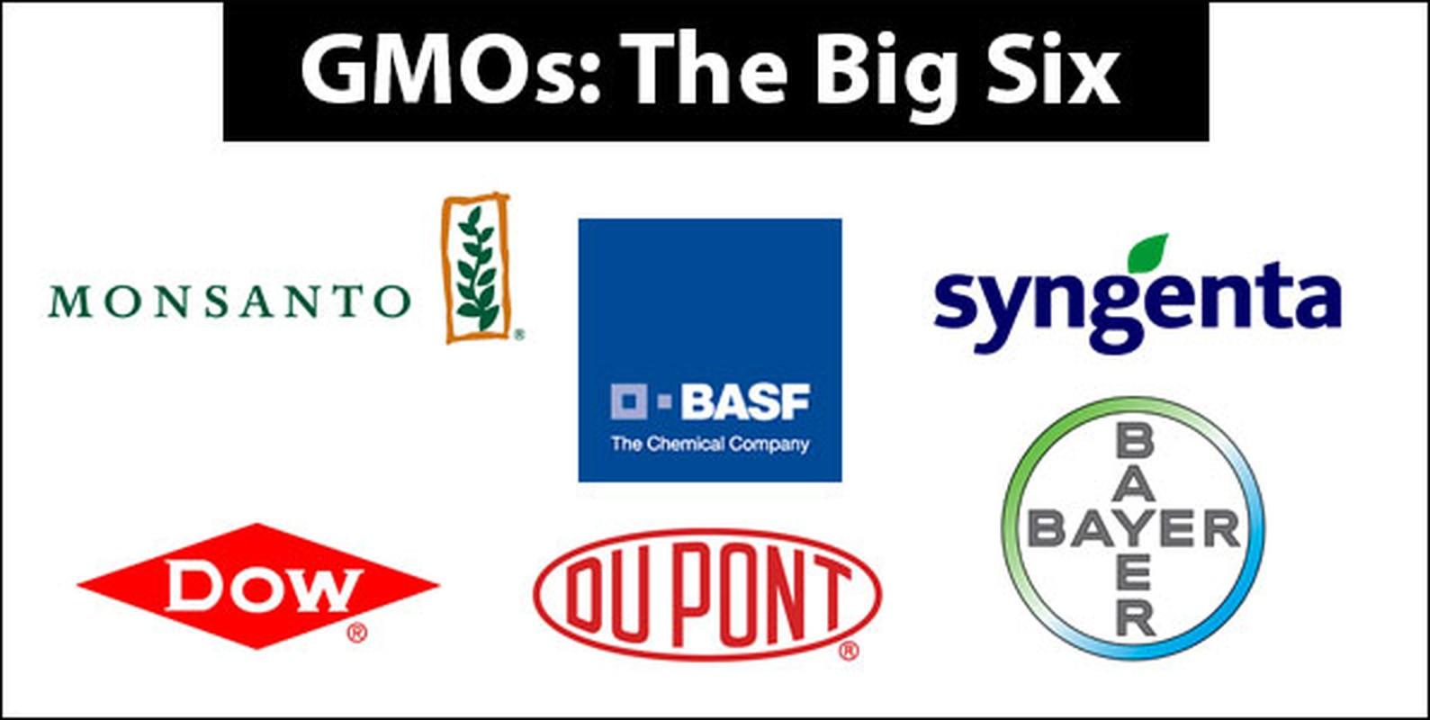 Phong trao phan doi thuc pham GMO co di nguoc lai khoa hoc?-Hinh-3