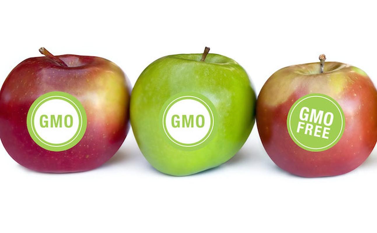 Phong trao phan doi thuc pham GMO co di nguoc lai khoa hoc?-Hinh-6