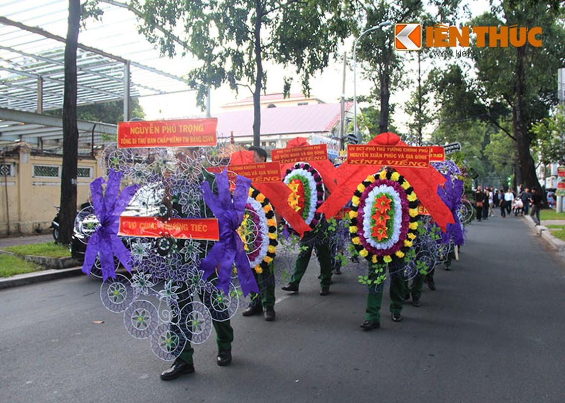 Dua tien nhac si Phan Huynh Dieu ve coi vinh hang-Hinh-4