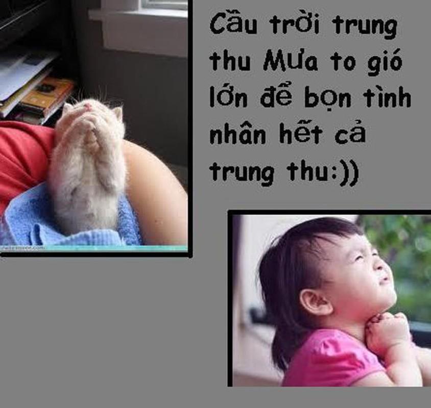 Tet Trung thu, dan mang duoc dip sat muoi vao noi dau dan FA