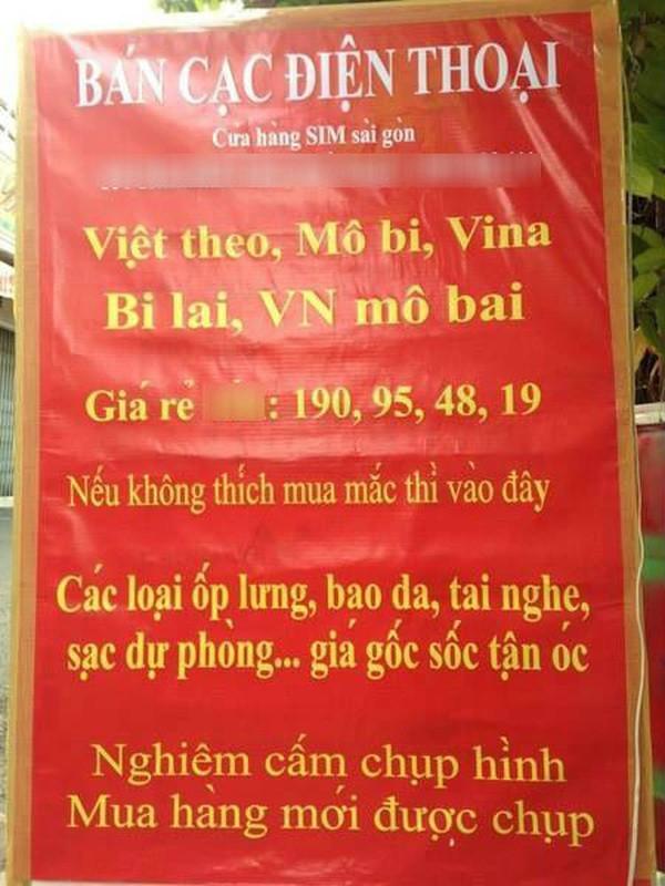 """Hack nao voi bien quang cao """"Viet hoa"""" xuat hien tren via he-Hinh-12"""