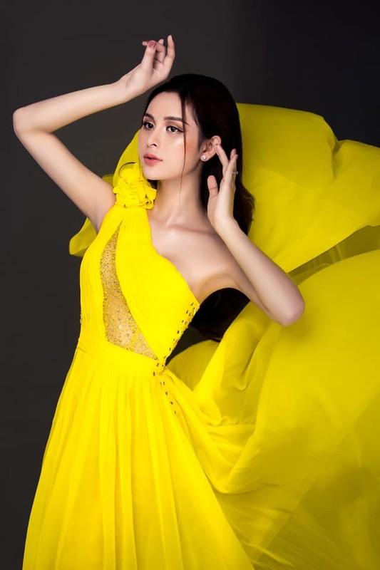 Thi sinh Hoa hau Chuyen gioi 2020 khoe nhan sac mien che-Hinh-9