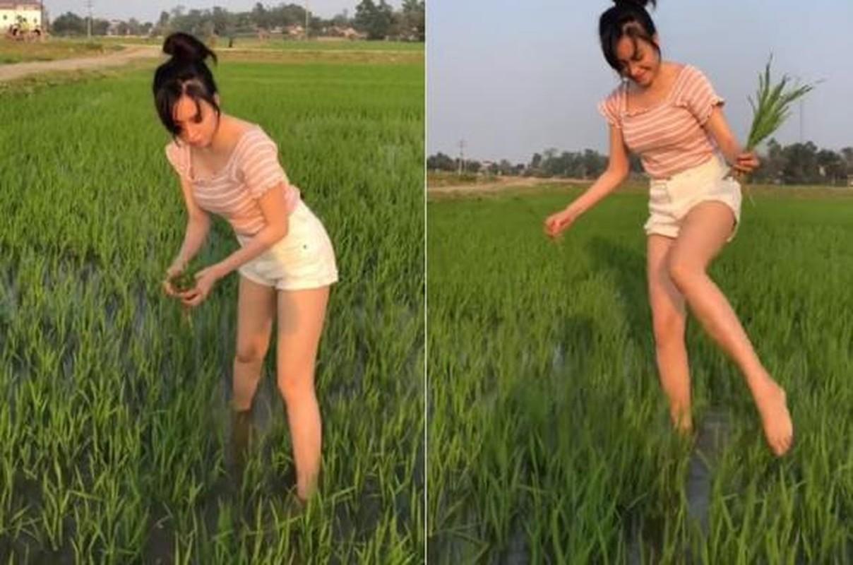 "Dien mot giau quan, ba Tung khien netizen duoc phen ""do mat""-Hinh-6"