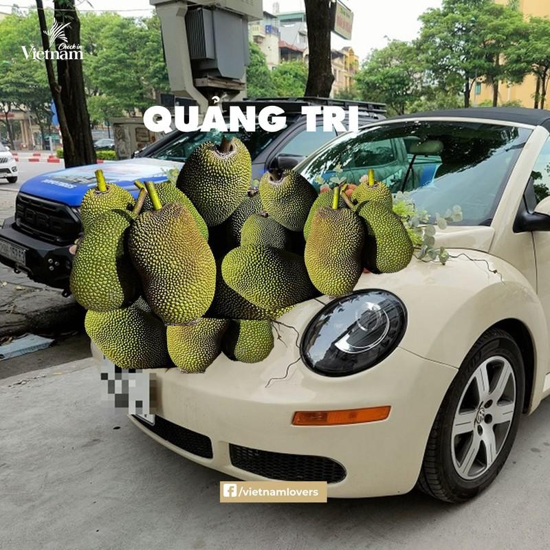 Anh che xe hoa phong cach dac san vung mien cuc ba dao cua netizen-Hinh-11