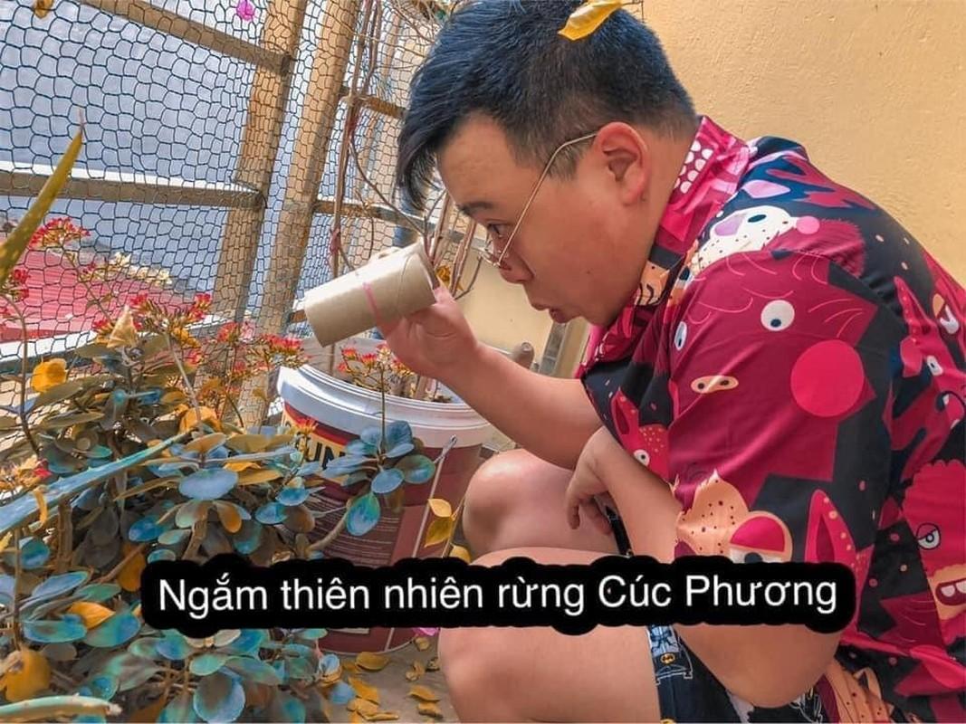 Du lich tai nha mua dich, chang trai 9X lam netizen cuoi ngat-Hinh-6