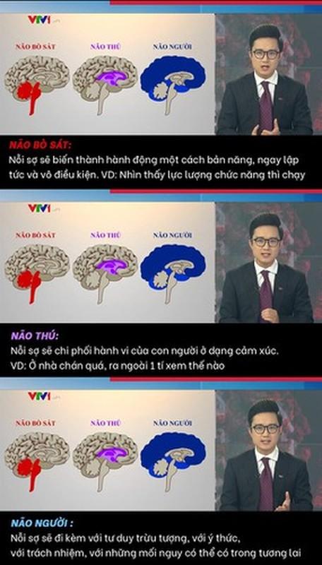 """Tu vu Le Anh, diem loat """"va mieng"""" cua dan MC VTV-Hinh-11"""