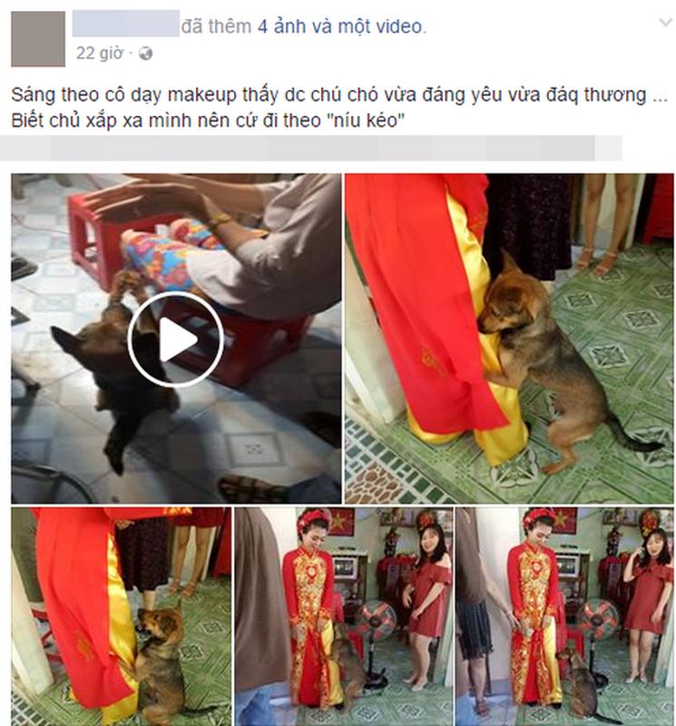 Cam dong cun cung lam nung co chu ngay lay chong gay sot mang-Hinh-5