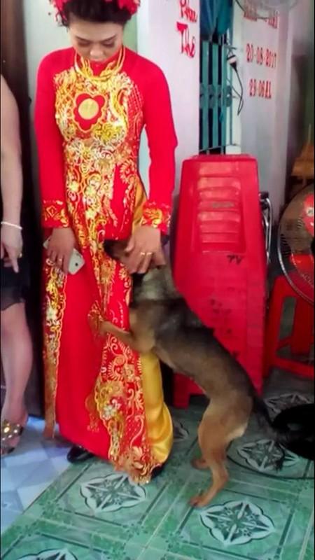 Cam dong cun cung lam nung co chu ngay lay chong gay sot mang-Hinh-6