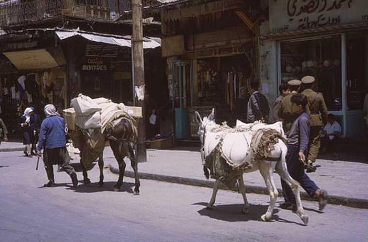 15 anh hiem ve cuoc song yen binh o Damascus nam 1965-Hinh-7