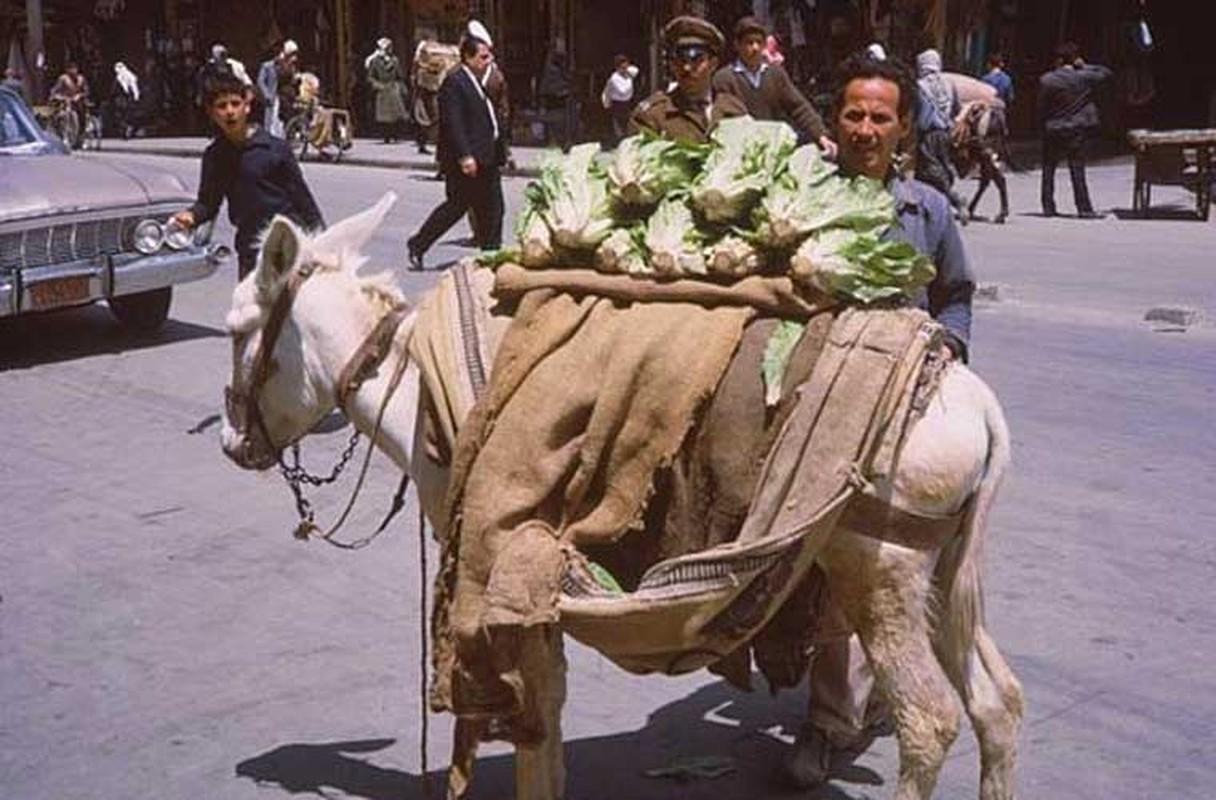 15 anh hiem ve cuoc song yen binh o Damascus nam 1965-Hinh-8
