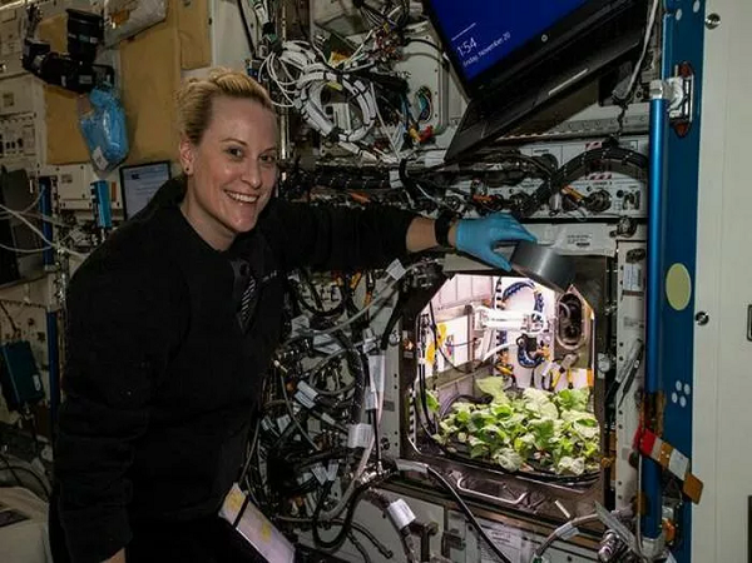 NASA trong thanh cong cu cai ngoai khong gian huong vi cuc ngon-Hinh-7