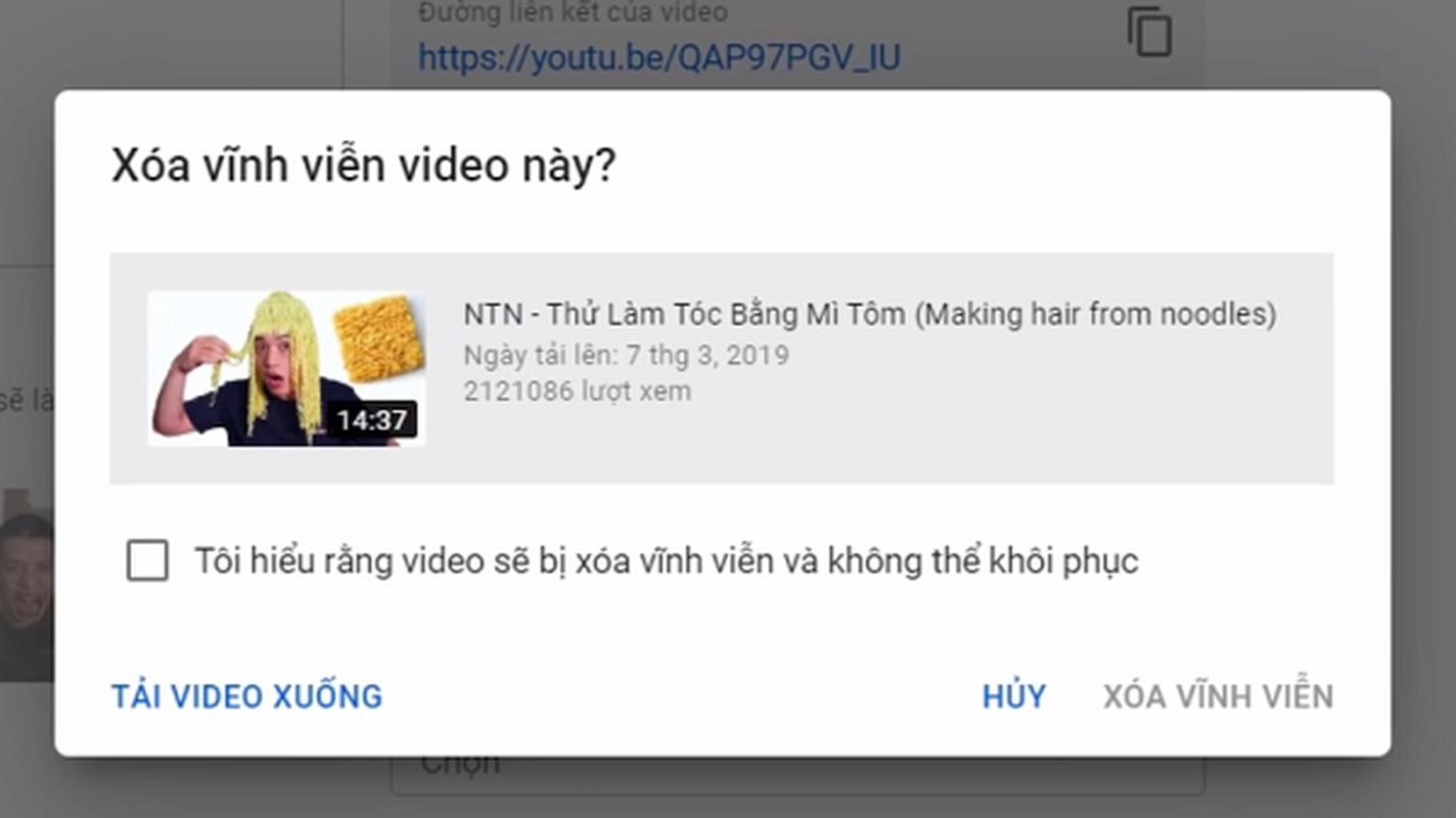 Kenh YouTube cua NTN dat top 3 luot dang ki tai Viet Nam-Hinh-7