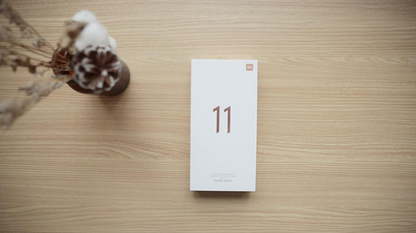 "Ly do gi khien Xiaomi van ""duoc long"" khi bo cu sac giong Apple?-Hinh-6"
