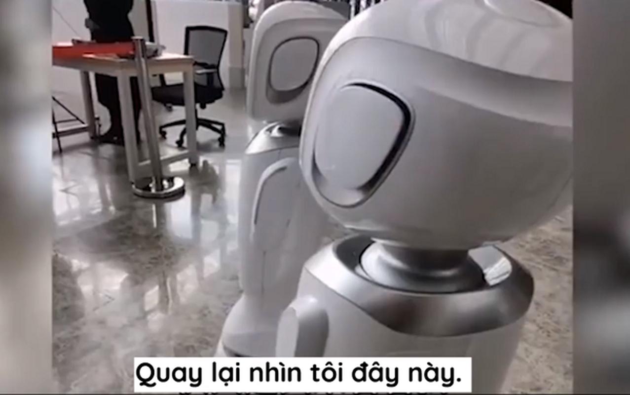 "Thuc hu chuyen 2 robot ""cai nhau"" trong thu vien gay sot mang xa hoi-Hinh-8"